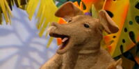 Arlene the Aardvark