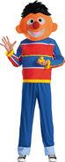 Adult Ernie-Costume