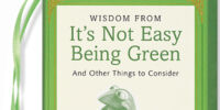 Wisdom from It's Not Easy Being Green