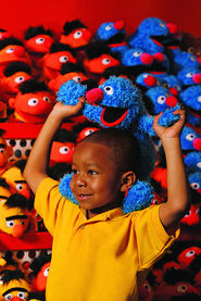 Sesame Place Plush 1