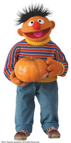 File:Ernie Pumpkin.jpg