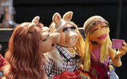 Recurring female Muppets