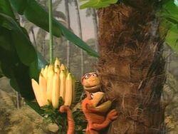 DaveyJoey.Bananas