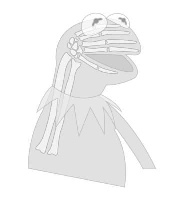 File:Kermit-xray 02.jpg