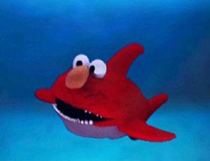 File:Ewteeth-shark.jpg