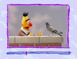 Ewbirds-bert