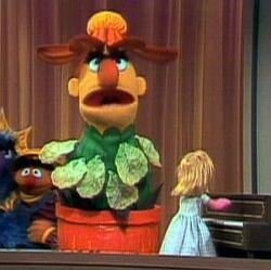Bert-flower