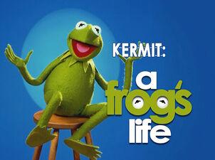 PepesProfiles-Kermit