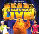 Bear in the Big Blue House Live: Surprise Party