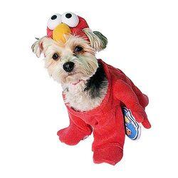NewYorkDog.Elmo