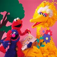 Elmo Grover drawing Big Bird