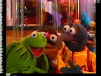 Muppet Madness-35