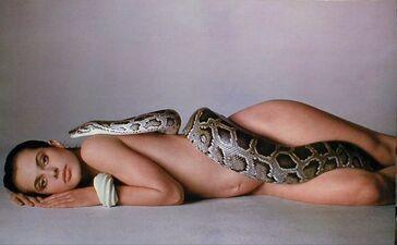 Richard-Avedon's-Nastassja-Kinski-and-the-Serpent-1981