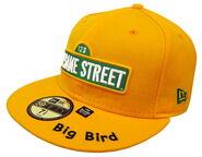 Sesame-sign-bigbird