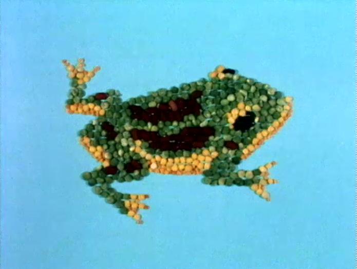 File:Frogseeds.jpg