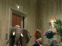 Elephantelevator
