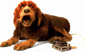 Storyteller's Dog