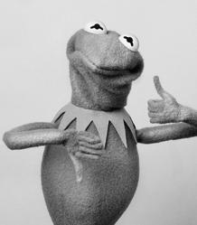 SüddeutscheZeitung-Kermit-04-HowDoYouLikeStatlerWaldorf