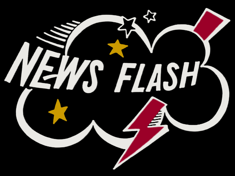 Image result for Muppet News Flashes