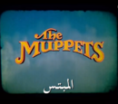 The Muppets (Middle East)