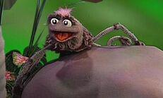 Sid Spider