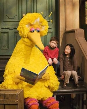Big bird book kids