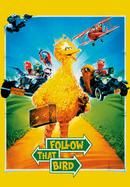 Netflix-followthatbird