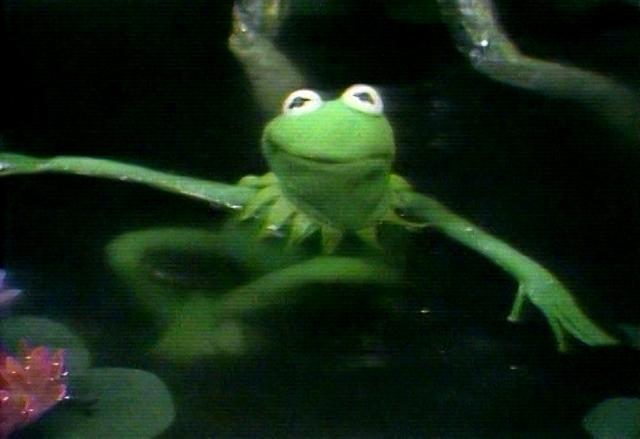 File:KermitSwimmingTFP.png