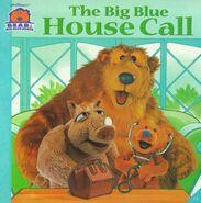 The Big Blue House Call