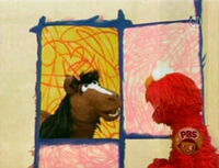 Ewhorse-interview