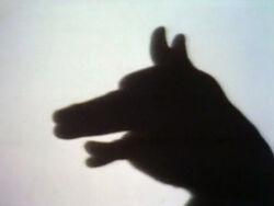Shadowpuppetdog
