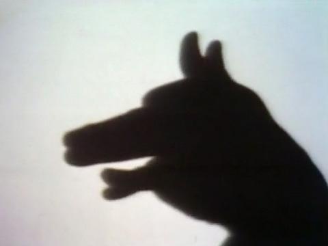 File:Shadowpuppetdog.jpg