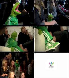 Adidas-Adicolor-Kermit-Ad-4of4-(2005)