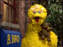 Bigbird-radar-next