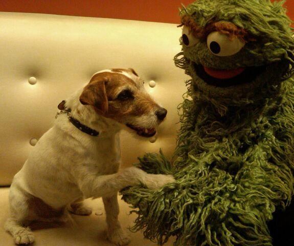 File:Uggie and Oscar.jpg