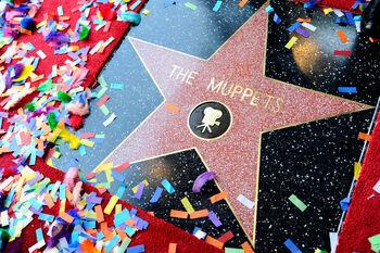 TheHollywoodWalkOfFame-TheMuppetsStar-(2012-03-20)