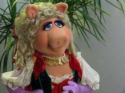 PiggyMTI