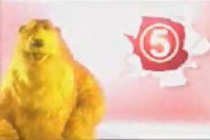Channel 5 UK Bear