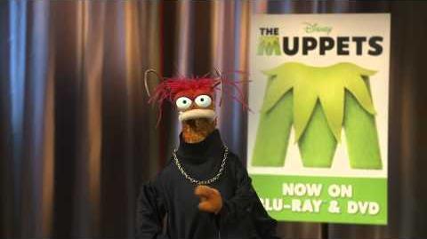 AskPepe Pepe Talks romance and Miss Piggy