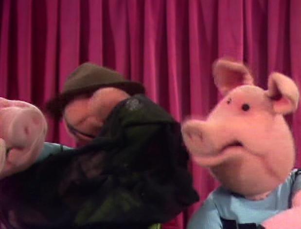 File:224 pigs take over.jpg