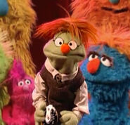 Murray (Anything Muppet)