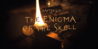 The Enigma of the Skull