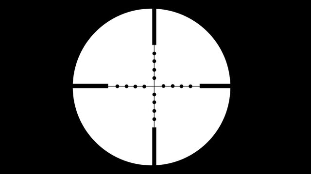 File:Best-sniper-scope bsots 0.jpg