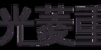 Mitsuhishi Heavy Industries