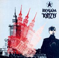 Brygada Kryzys live.jpg