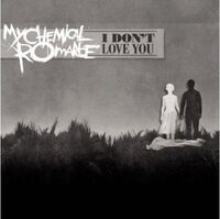 I Dont Love You