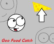 Geofoodcatchlogo