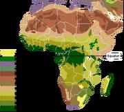 Vegetation Africa