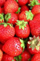 Strawberry scrapsy.png