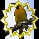File:Badge-6851-7.png